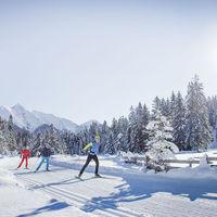 Лыжи. Сезон 2018-19