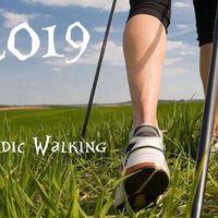 Скандинавская ходьба 2019