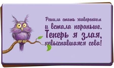 24681_1560643_672319459485669_885392586_n_large