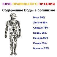 35207_%d0%a1%d0%bb%d0%b0%d0%b9%d0%b486_medium