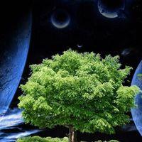 Голубая планета Солнечной системы Планета Земля