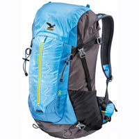 Salewa Hiking Ascent 30 polarblue/anthracite